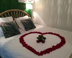 Appart Garden - Rennes - Appartement palmier SPA